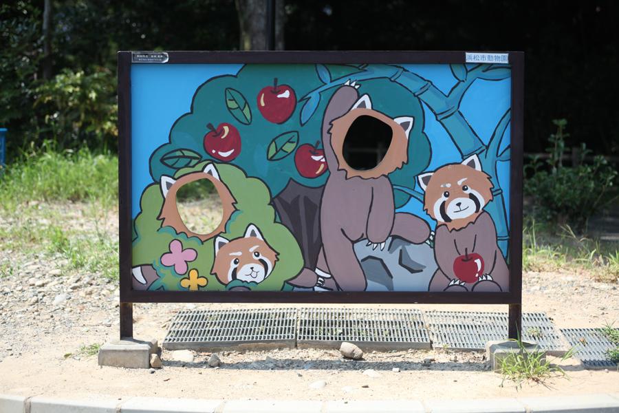 レッサーパンダの顔抜き看板