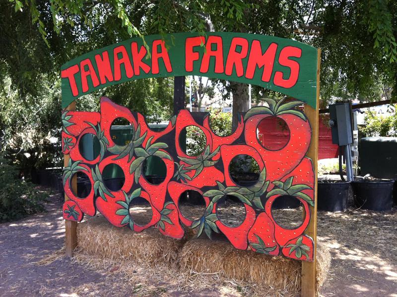 Tanaka Farms イチゴ達の顔ハメ看板