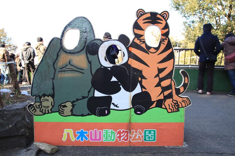 ゴリラ、パンダ、トラの顔出しパネル
