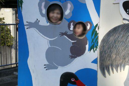 コアラの親子の顔ハメ看板