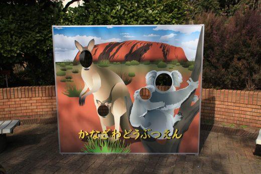 オーストラリア、エアーズロックが背景の顔ハメ看板