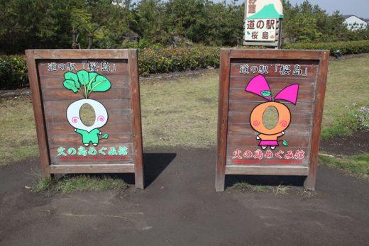 桜島大根とみかんの顔ハメ看板